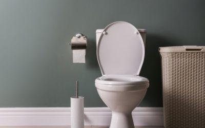 L'abattant WC Odeon up de Jacob Delafon