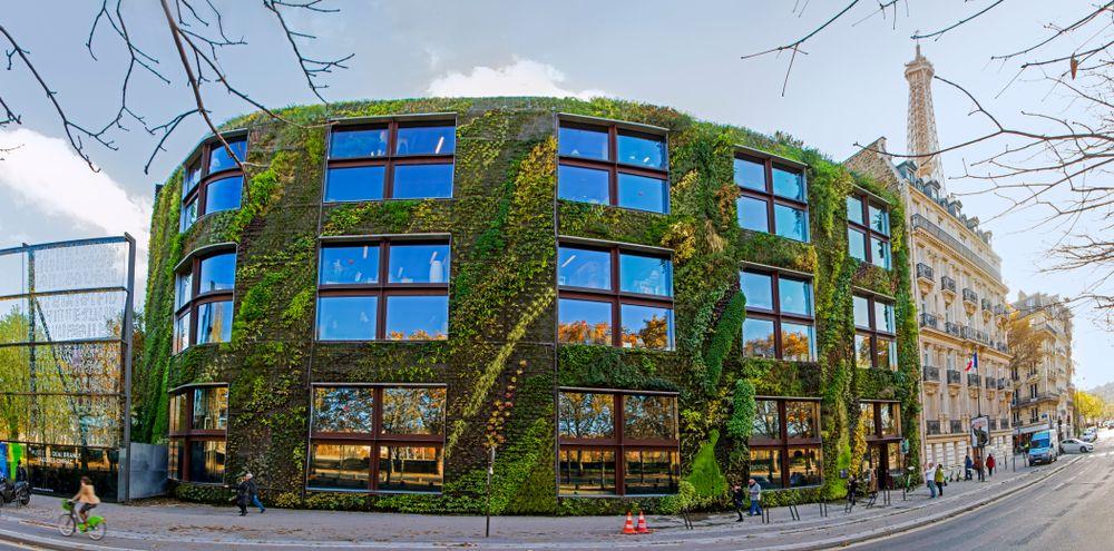 façade-végétalisée-batiment