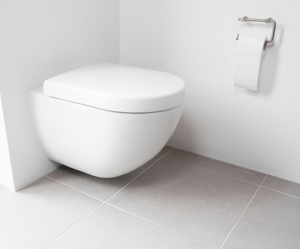 Notice Installation Wc Suspendu Grohe la pose placo pour wc suspendu - blog idéobain