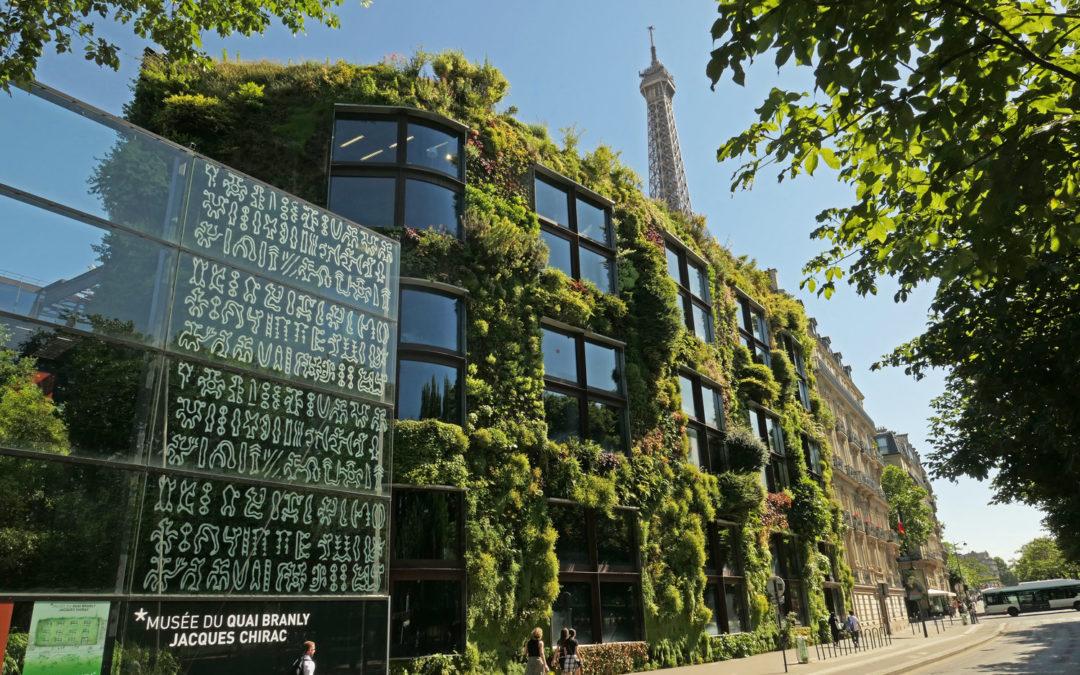 La foresterie urbaine : un défi pour les grandes métropoles