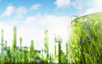 Le label HQE : tout savoir sur la certification environnementale