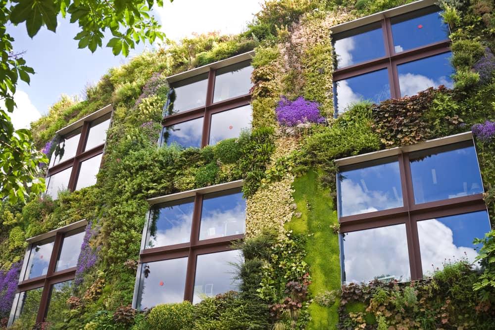 architecture-ecologique-facade