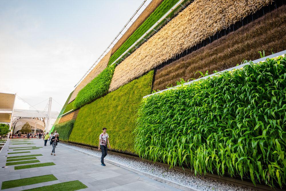 architecture-durable-vegetal