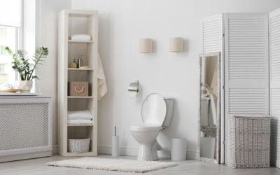 Sanitaire de salle de bain : pourquoi choisir Dubourgel ?