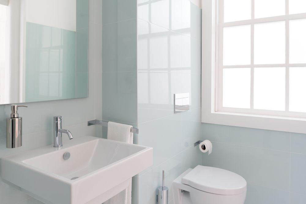 dubourgel-toilette