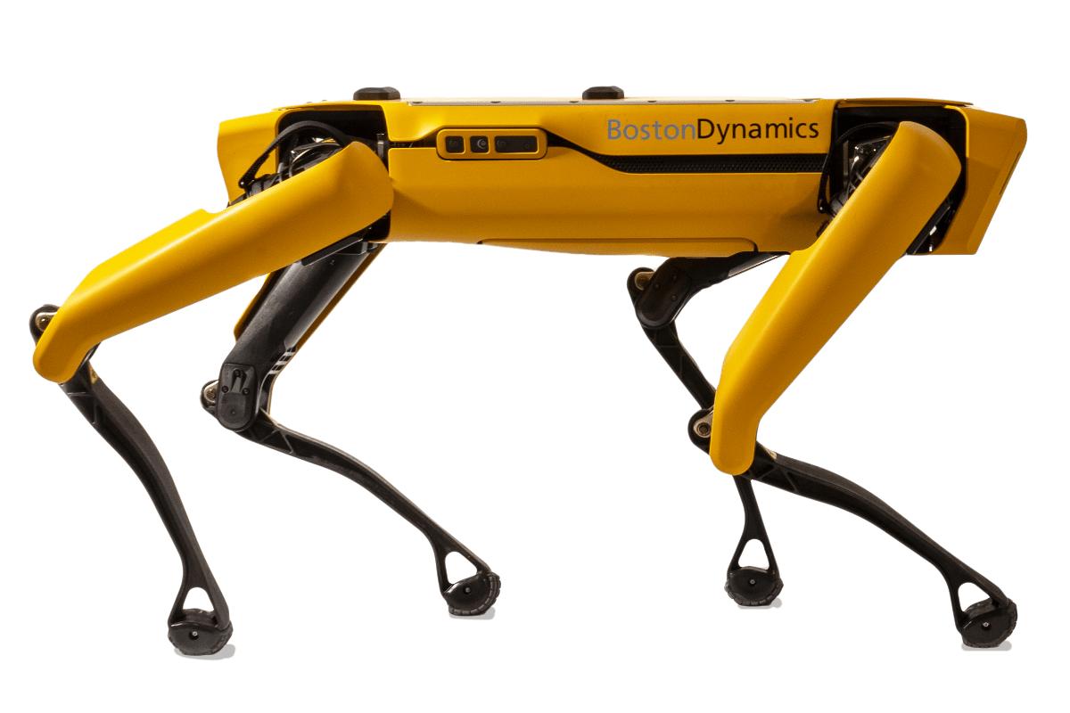 robots-chantiers-chien