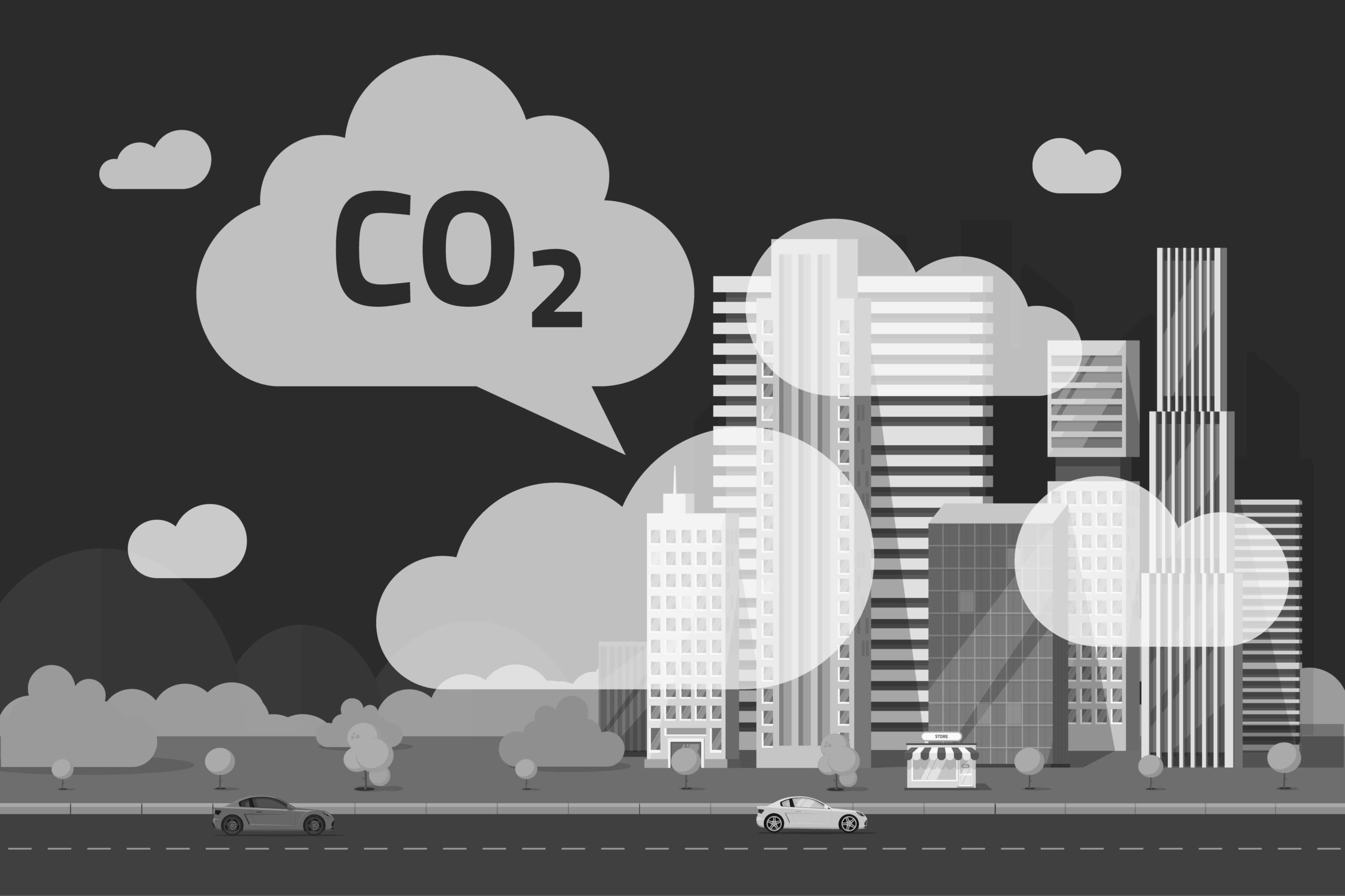 bbca-carbone
