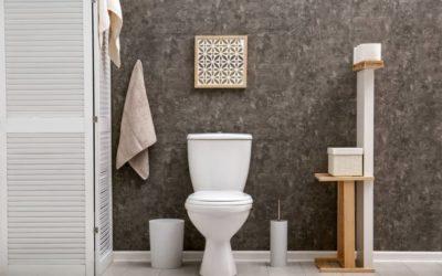 SFA, zoom sur l'inventeur des WC Sanibroyeurs